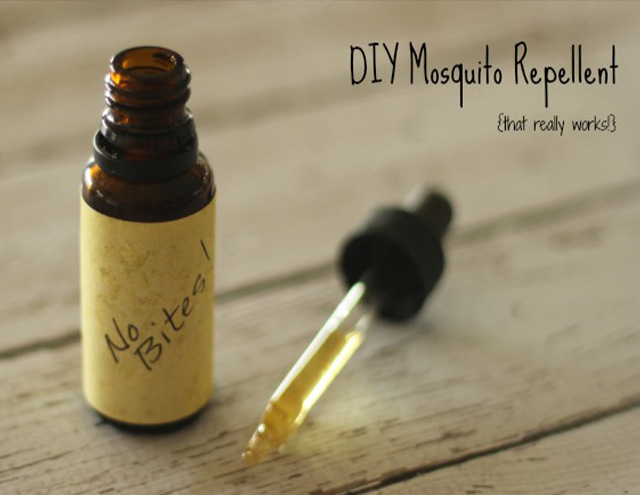 : If you want to learn how to throw a bonfire party, consider making your own insect repellent