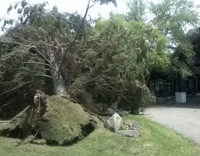Damage from 2015 Storm in Brainerd MN
