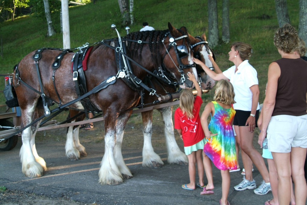 Kids and mom petting the horses after a ride on a horse drawn carriage MN