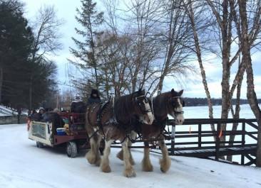 Minnesota Vacation Poll 16 – Cragun's Resort Winter 2016