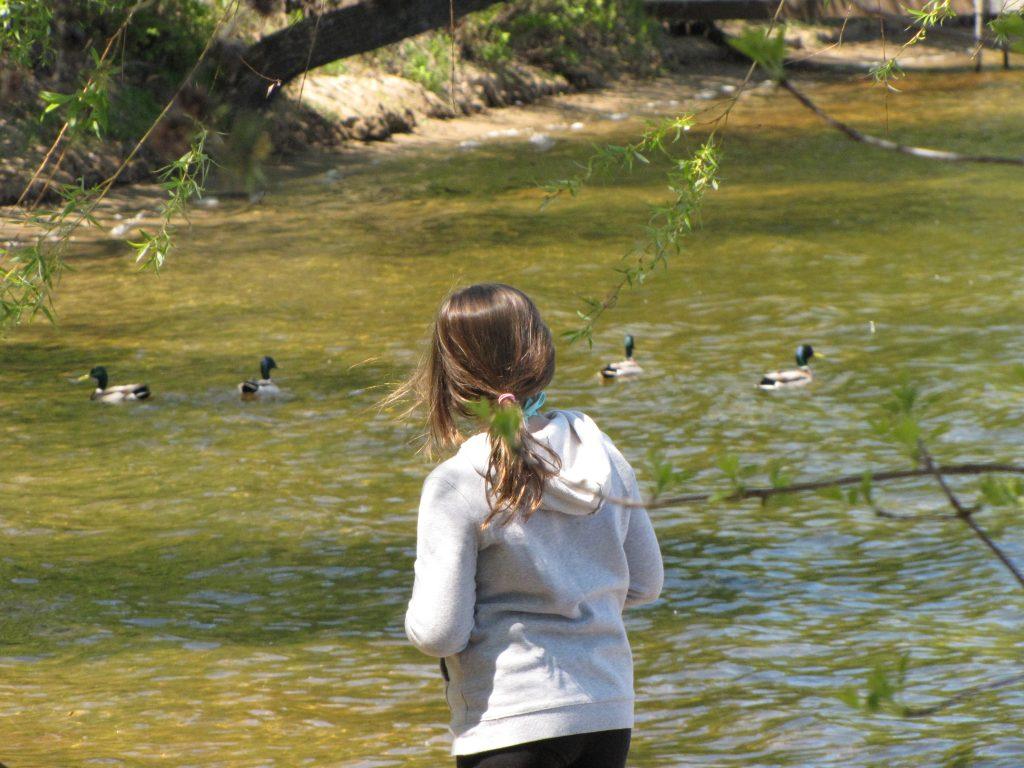 Girl enjoying all the wildlife at Cragun's Resort
