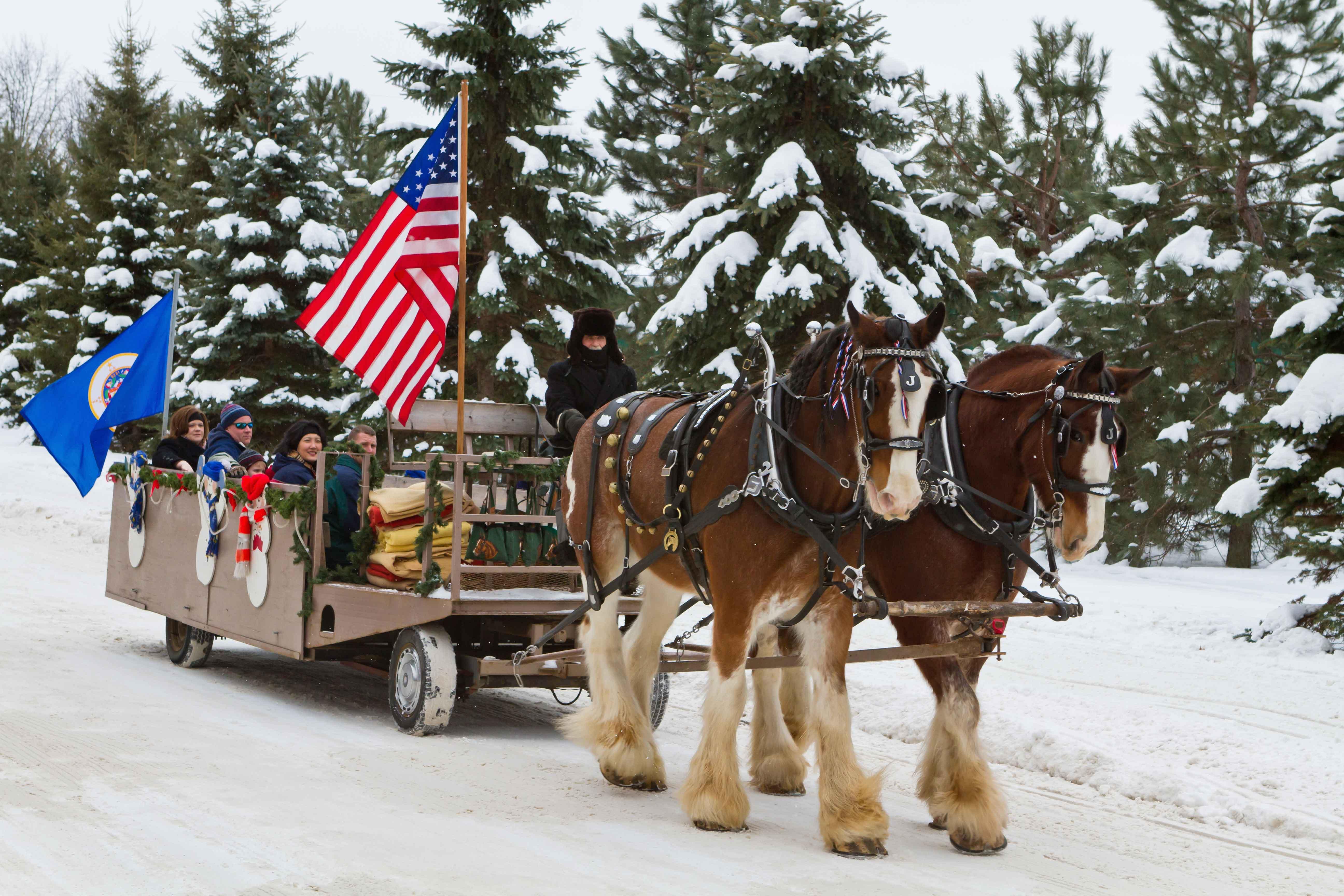 Horse drawn trolley rides in Brainerd
