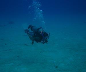scubaImg[1]