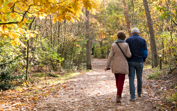Fall Getaway Experience for Couples
